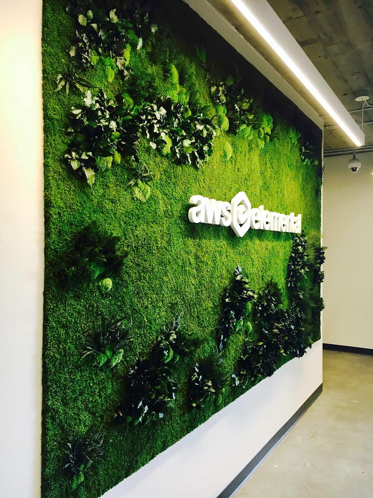 Amazon AWS plant wall made with a preserved forest moss base, bun moss , stabilised ming fern, leather fern and ivy haedera