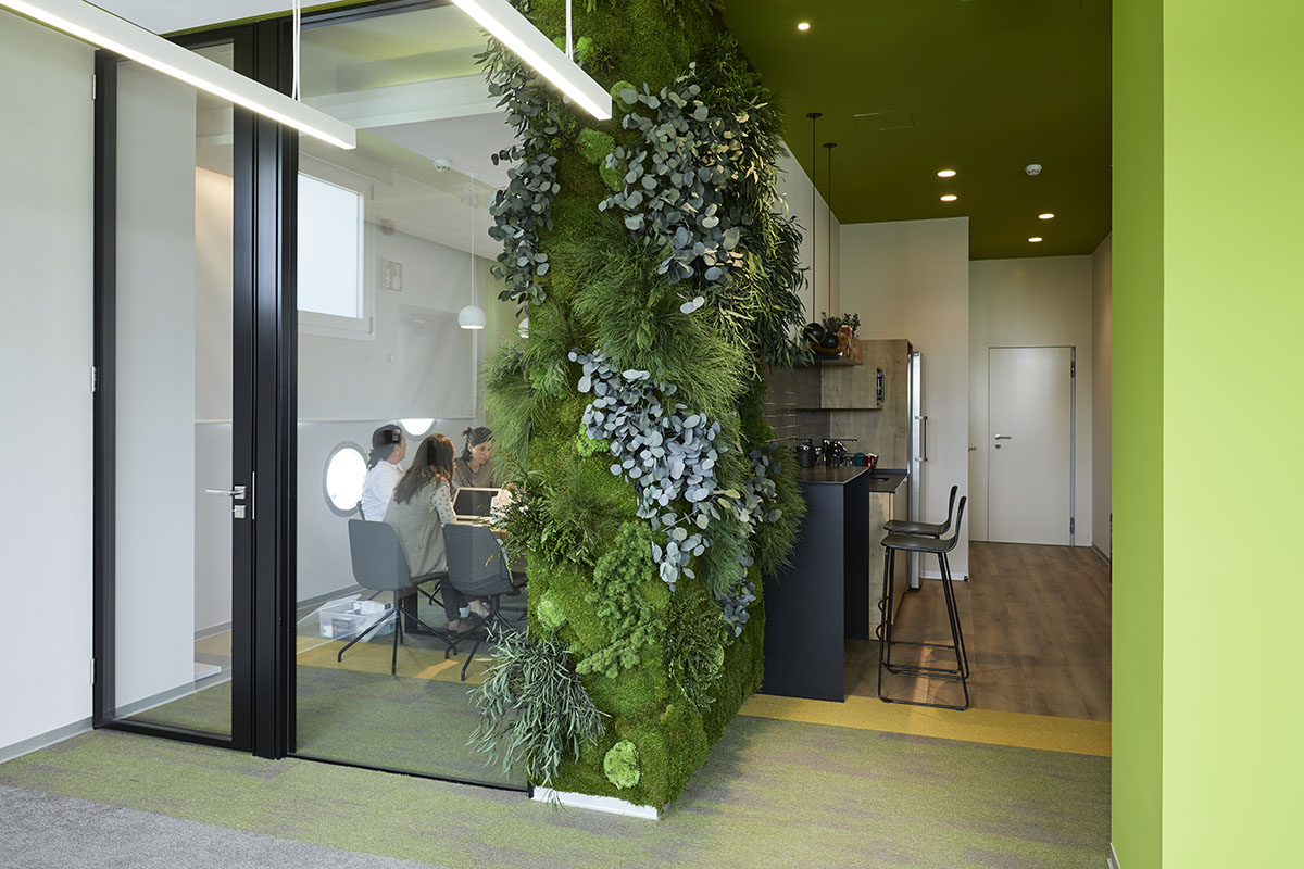 office plant wall