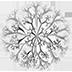 ScandiMoss Logo